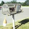 Lobster trap mail box