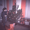 Mary trimming the tree-La. R.