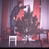 Top first! Louis & our tree-La. R.