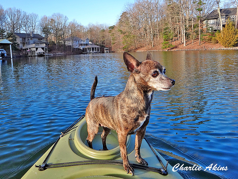 Tina Marie has the best seat in the kayak.