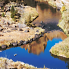 Crooked River Reflection, 2015