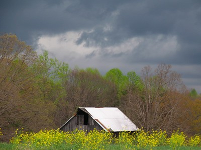 """Barn Storm"" Smith Mtn. Lake, Va."