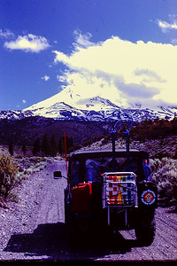 Logging road to Shasta