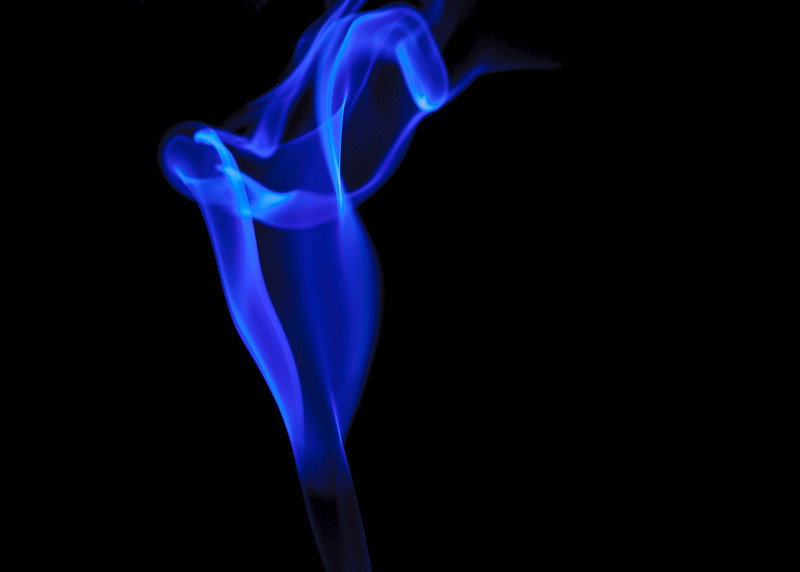 smoke lily in blue