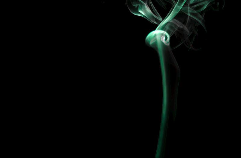 long stem