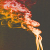 Smoke Trails 4~8443-1sq.