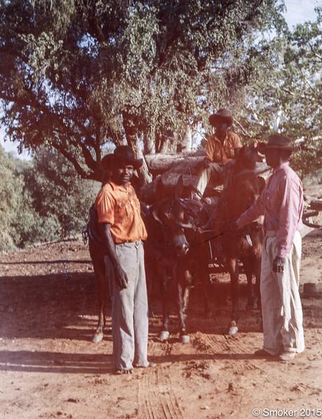 1954 Jubilie Station mule team