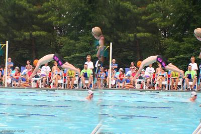 Sharks-vs-TwinLakes-08-17.jpg