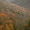 Fall 2009 ;