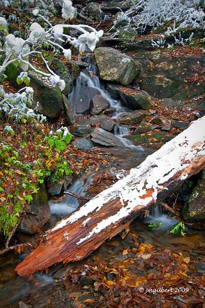 Fall 2009: One of many cascades along Newfound Gap Road.