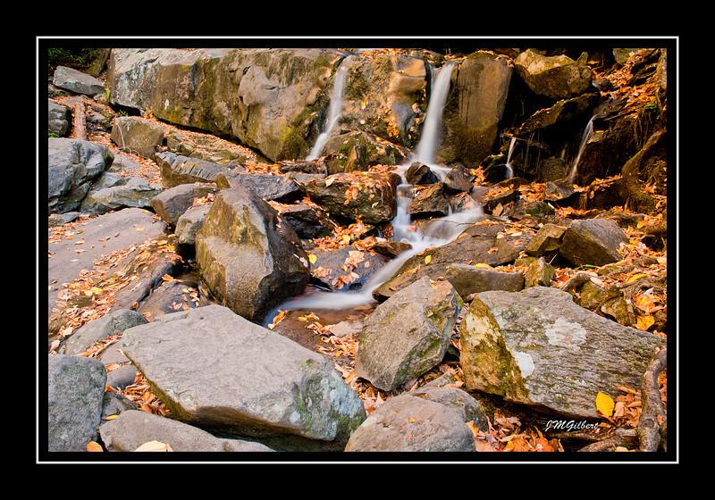 NJG3524:  The Canyon below Laurel Falls.