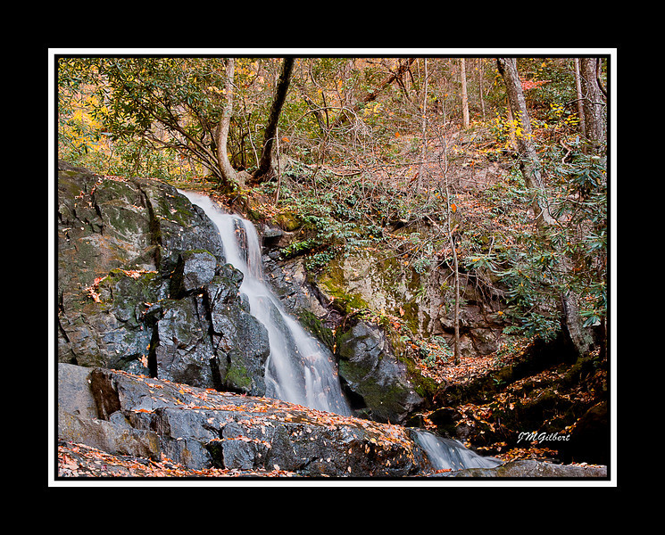 NJG3490:  Laurel Falls.  the water flow is low at this time of year but still makes for a beautiful picture.  I have been here in the spring when the water was rushing like a tidal wave.