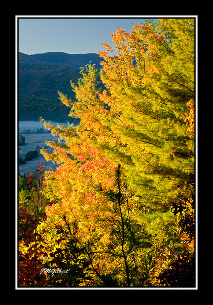 NJG3392:  By 7:00 the sun was rising and shining down on the fall foliage illuminating the colors.