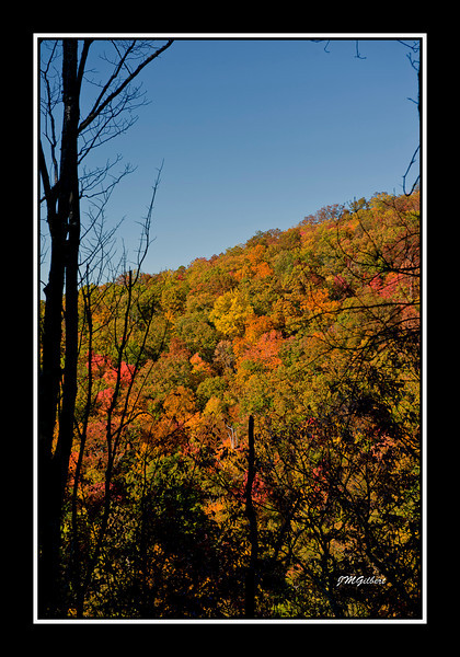 NJG3477:  The Mountains as seen through openings in the trail to Laurel Falls.