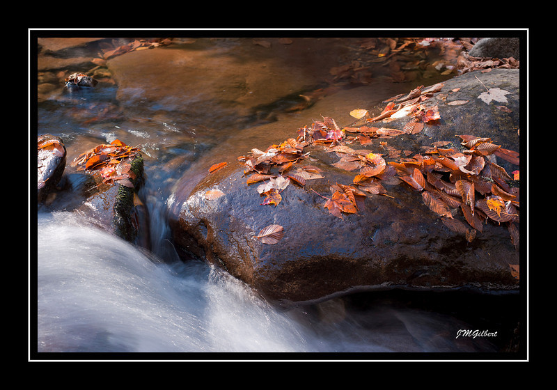 _NJG3617: Cascades on the Chimney Top Trail.