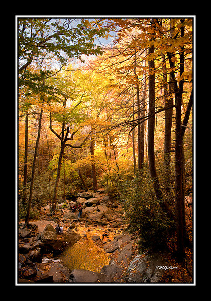 NJG3507:  Below Laurel Falls.  I took several shots of this because it was so beautiful.