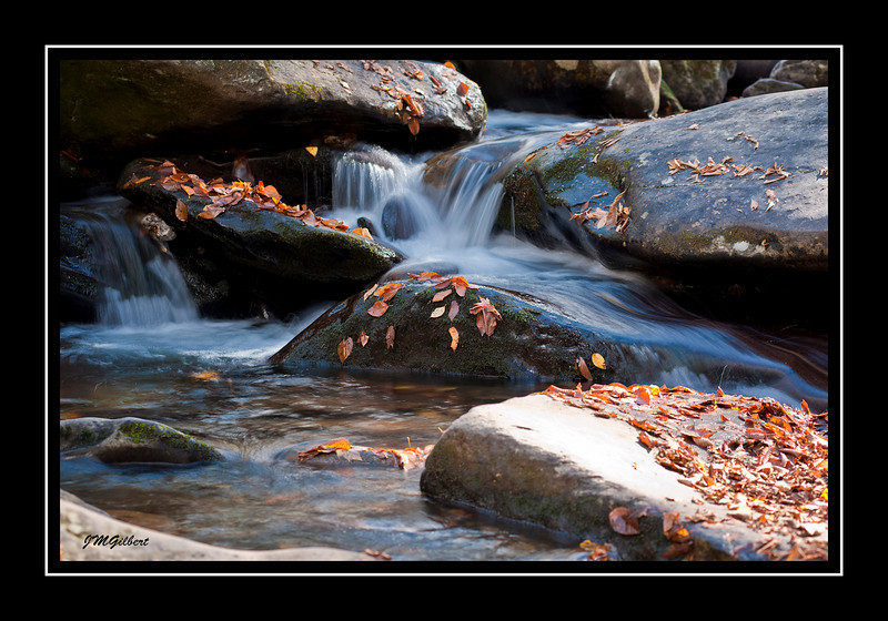 _NJG3607:  Cascades along the Chimney Top Trail.  I was here last year with another friend Niala Branson and the waters were so high that this cascade was like a flood.