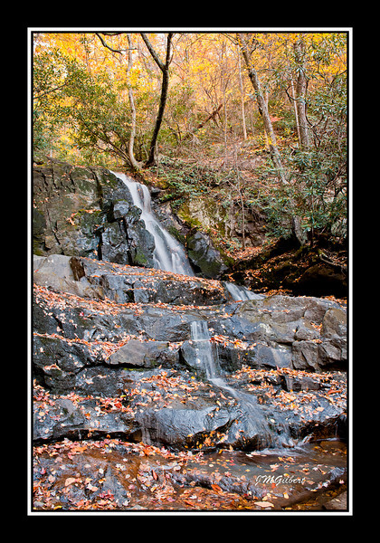 NJG3487:  Laurel Falls.  the water flow is low at this time of year but still makes for a beautiful picture.  I have been here in the spring when the water was rushing like a tidal wave.