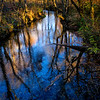 Abrams Creek