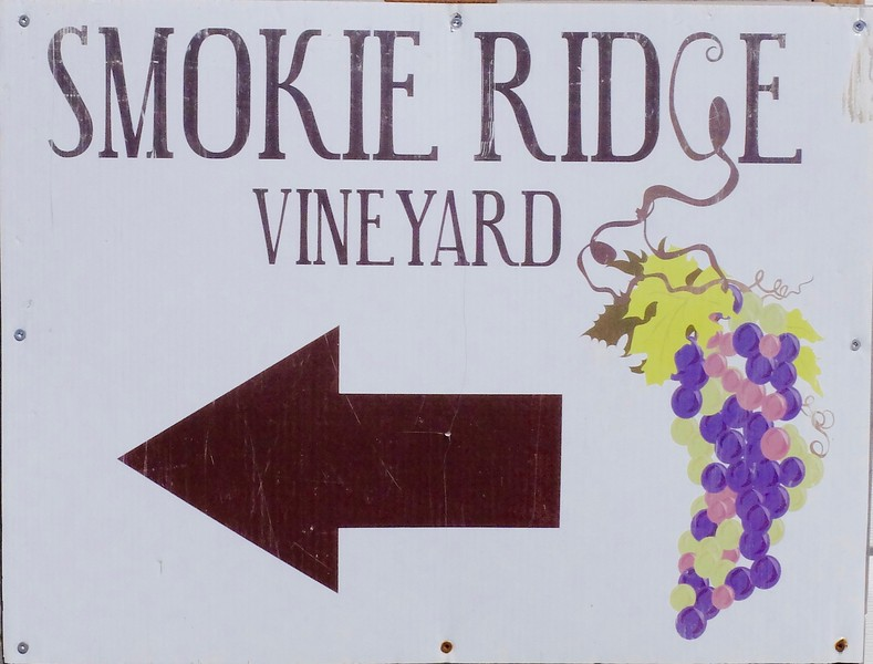 Smokie Ridge Vineyard