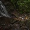 Ritch @ Socco Falls