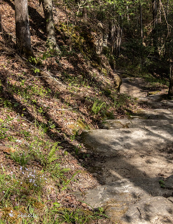 Rocky pathway I was on.