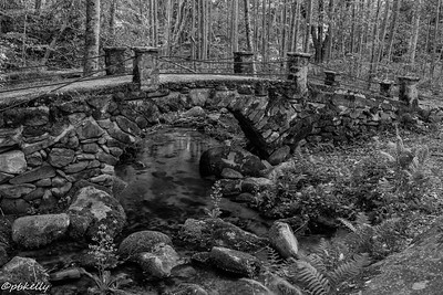 The fairy bridge at Elkmont in B&W.