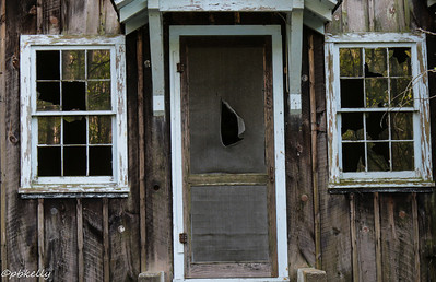 One of the decaying houses at Elkmont.  The reflections in the partly broken windows are what intrigued me.