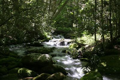 Roaring Fork Motor Nature Trail GSMP