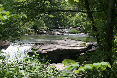 Tellico River Cherokee National Forest