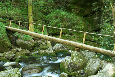 At just past 2 miles the trail crosses Ramsay's Prong on the first of  two log bridges.