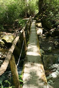 Just before the trail reaches 3 miles the trail crosses Ramsay's Prong on the second log bridge.