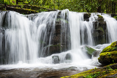 Large Rhododendron Falls,  Little Pigeon RIver, Smoky Mountains, TN