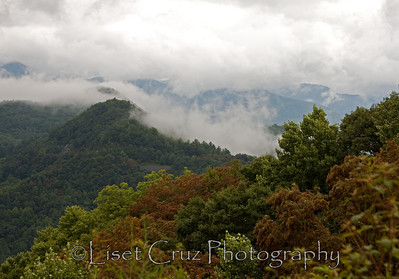 The Great Smoky Mountains.   North Carolina and Tennessee.  United States