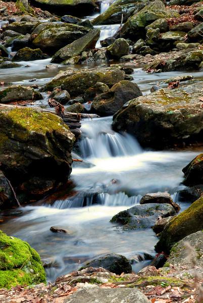 Smoky Mountains - Tremont Area