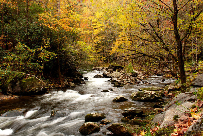 Smoky Mountains - Little River