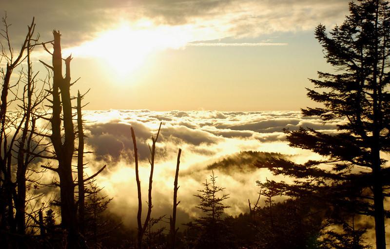 Smoky Mountains - Clingmans Dome