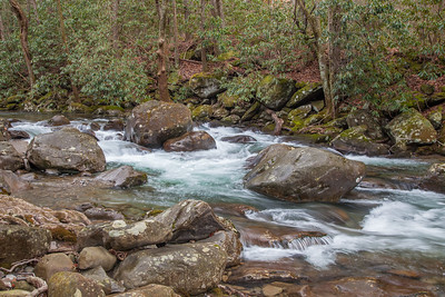 Unnamed creek, Greenbriar area, Great Smoky Mountains National Park, Tennessee.