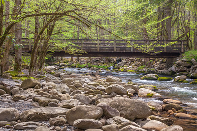 Little Pigeon River, Greenbriar Area, Great Smoky Mountains National Park, Tennessee