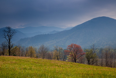 Cades Cove, GSMNP, TN