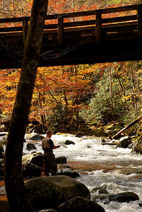Smoky Mountains - Tremont (Flyfishing)