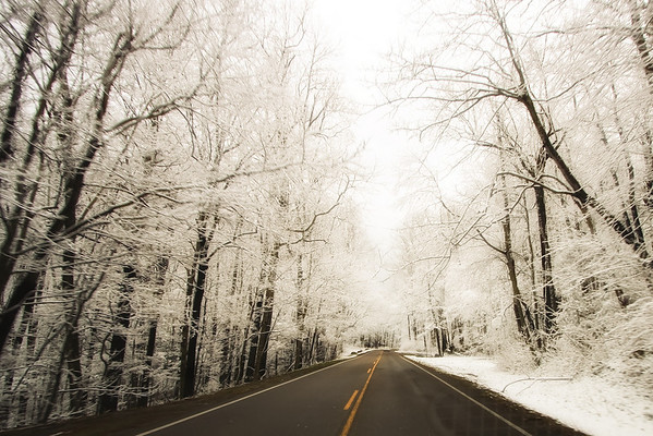 Smoky Mountain Pictures