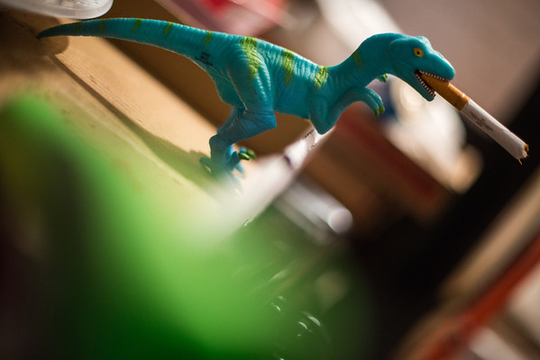 01/18/2013:<br /> Maybe the real reason the dinosaurs became extinct - they were party animals.