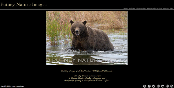 """Putney Nature Images from Colorado<br /> Specializes in Landscape Photography,Wildlife Photography,<br /> Web Site can be found at : <a href=""""http://www.putneynatureimages.com"""">http://www.putneynatureimages.com</a><br /> SmugMug Customization Wordpress Theme, by jR Customization"""