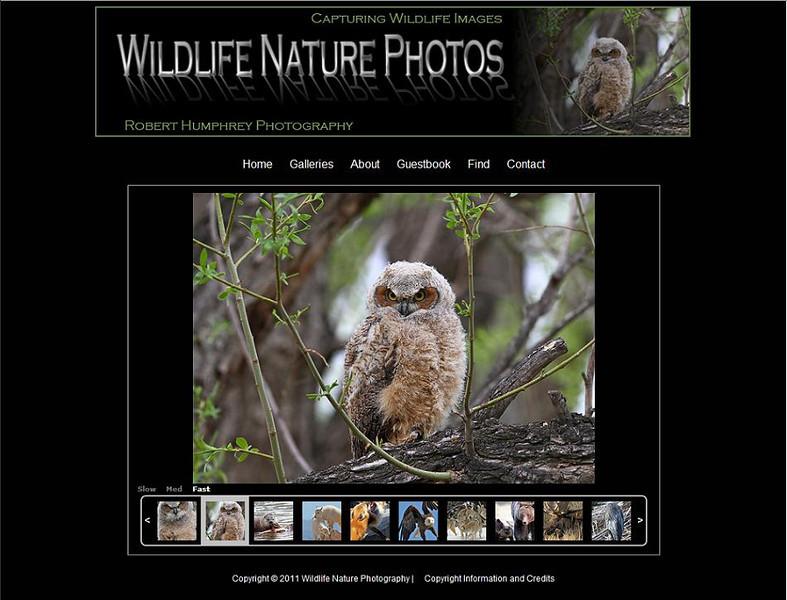 "<p class=""ContentText""> Wildlife Nature Photos – Photographer specializes in wildlife and nature photography<br><br> SmugMug Customization -  By jR Customization </p>  <p class=""ContentSubHeader""> <a href=""http://www.wildlifenaturephotos.com/"" target=""_blank"" onClick=""javascript: pageTracker._trackPageview('/outgoing/http://www.wildlifenaturephotos.com/);"">Wildlife Nature Photos</a> </p>  <p class=""ContentText""> - Specializes in wildlife and nature photography<br> - Web site is at <a href=""http://www.wildlifenaturephotos.com/"" target=""_blank"" onClick=""javascript: pageTracker._trackPageview('/outgoing/http://www.wildlifenaturephotos.com/);"">Wildlife Nature Photos</a><br> - Entire Web Site Hosted via Smugmug<br>  </p>"