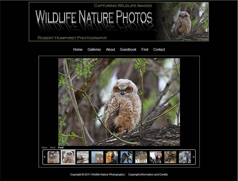 "<p class=""ContentText""> Wildlife Nature Photos – Photographer specializes in wildlife and nature photography<br><br> SmugMug Customization -  By jR Customization </p>  <p class=""ContentSubHeader""> <a href=""http://www.wildlifenaturephotos.com/"" target=""_blank"" onClick=""javascript: pageTracker._trackPageview('/outgoing/http://www.wildlifenaturephotos.com/);"">Wildlife Nature Photos</a> </p>  <p class=""ContentText""> - Specializes in wildlife and nature photography<br> - Web site is at <a href=""http://www.wildlifenaturephotos.com/"" target=""_blank"" onClick=""javascript: pageTracker._trackPageview('/outgoing/http://www.wildlifenaturephotos.com/);"">Wildlife Nature Photos</a><br> - Entire Web Site Hosted via Smugmug<br>  </p>"