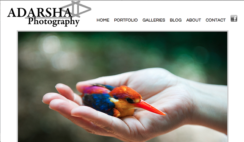 """Adarsha Photography<br /> Specializes in Portrait Photography,Landscape Photography,Wildlife Photography,<br /> Web Site can be found at : <a href=""""http://www.adarshaphotography.com"""">http://www.adarshaphotography.com</a><br /> SmugMug Customization by jR Customization"""