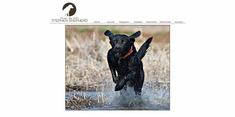 "<p class=""ContentSubHeader""> <a href=""http://www.gundogstudio.com"" target=""_blank""  onClick=""javascript: pageTracker._trackPageview('/outgoing/gundogstudio.com/');"">The Gun Dog Studio</a> </p> <p class=""ContentText""> - Specializes in Nature, Landscape, Wildlife and Hunting Photography<br> - Georgia and Arkansas Photographer<br> - Web site is at <a href=""http://www.gundogstudio.com/"" target=""_blank"" onClick=""javascript: pageTracker._trackPageview('/outgoing/gundogstudio.com/');"">www.gundogstudio.com</a><br> - Entire Web Site Hosted via Smugmug<br> </p>"