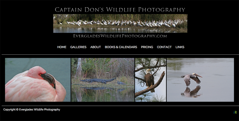 Everglades Wildlife Photography