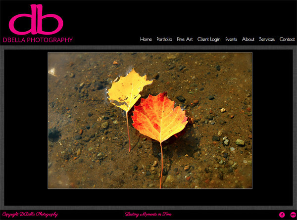 """DBella Photography from New York<br /> Specializes in Portraits and Landscape Photography<br /> Web Site can be found at: <a href=""""http://www.dbellaphotos.com/"""">http://www.dbellaphotos.com/</a><br /> SmugMug Customization by jR Customization"""